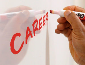 Career Coaches and their Resume Guidelines