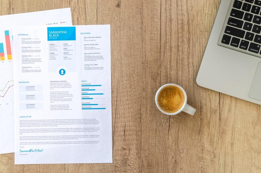 job resume format sample for chronological layout